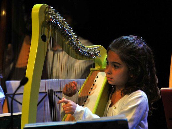 Harpe2-1 (Copier)