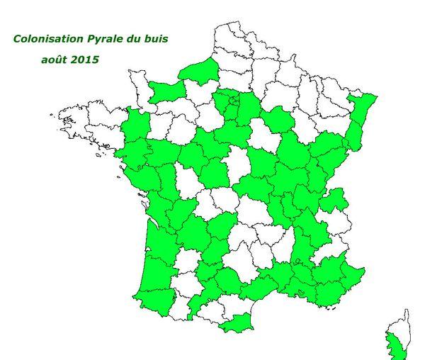 Carte-pyrale-du-buis-08-2015