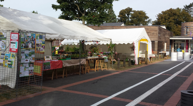 1stands marché.JPG