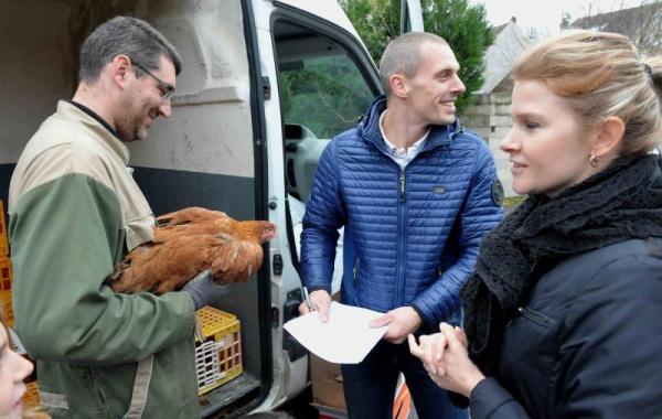 Villevaudé - adoptons des poules 9