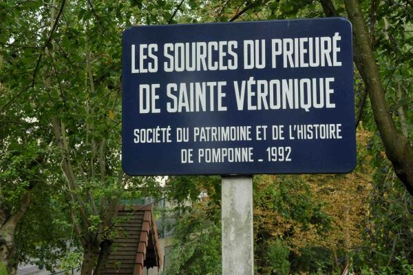 Pomponne-ste-véronique-1 - Copie