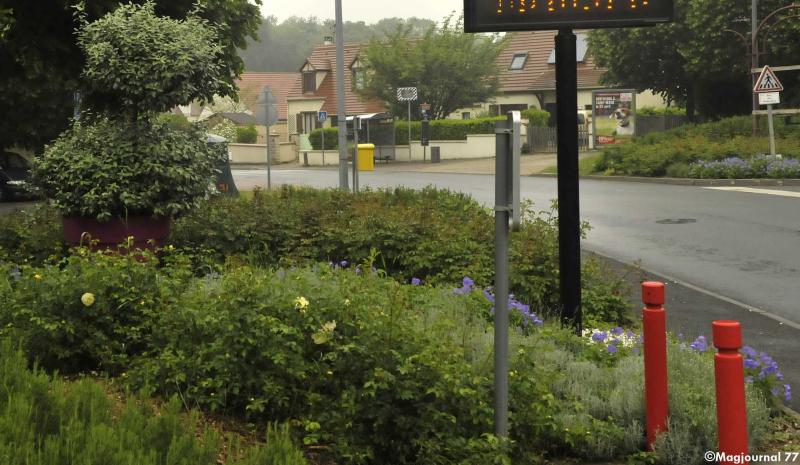 Villevaudé-première-fleur-pour-le-village