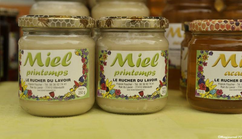 Villevaudé-bourse-aux-plantes-2