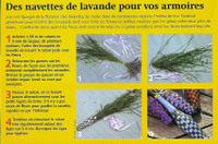 Photo_bourse_aux_plantes